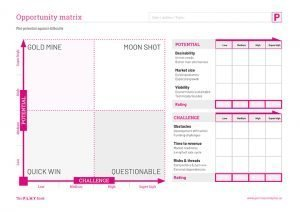 Opportunity Matrix worksheet