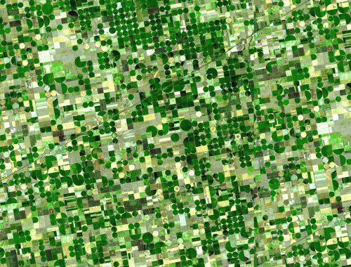 Innovation Landscape Matrix Image - circles
